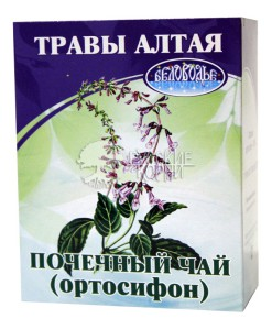 Травы при пиелонефрите для беременных 84